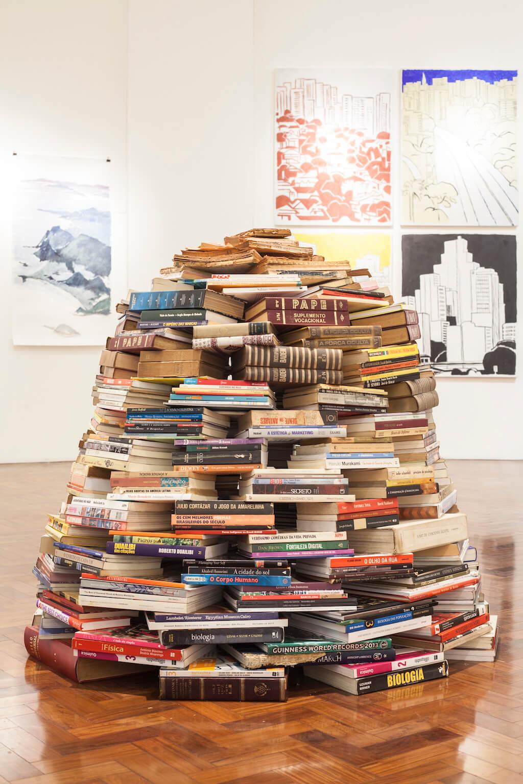 a biblioteca que eu vi